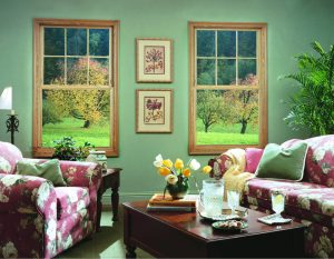 Energy Efficient Windows Wheatland WY